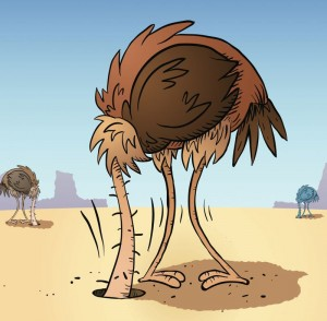 ostrich-head-insand